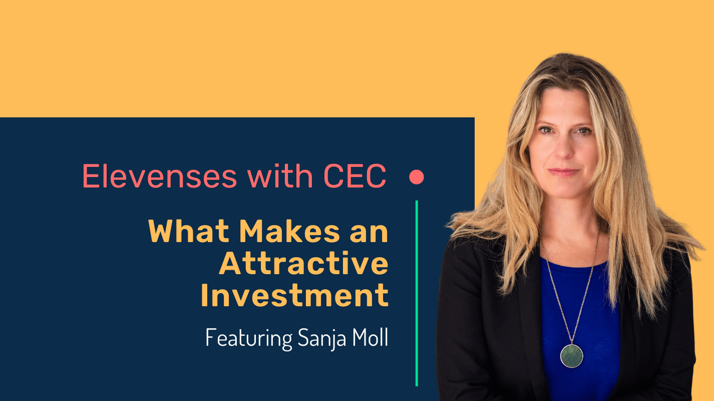 What makes an attractive investment with Sanja Moll